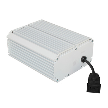 1000 Watt HID Ballast 230V Professional Manufacturer Dimmable for HPS/MH Grow Lamp for Flower Greenhouse and Hydroponics 0-10V Controlling