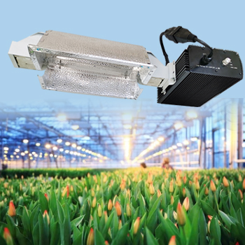 1000 Watt HPS MH with Digital Dimmable Ballast System Lighting Kits for Hydroponic Aeroponic Horticulture Growing Equipment Vegetative 400V Grow Light