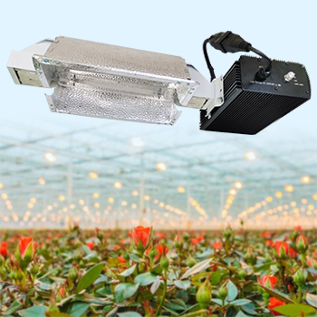 2021 Factory Hot Sale HPS 1000W Double-Ended Horticulture Agriculture Commercial Vertical Farms Hydroponic Dimmable 347V Full Spectrum Grow Light