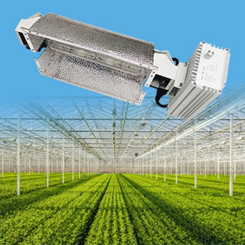 CMH 630w Ceramic Metal Halide Complete Lamp Fixture System for Greenhouse Plants and Medicine Cannabis Growth 347V Full Spectrum Grow Light