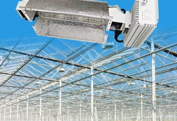 Greenhouse Indoor Commercial Plants Seeds Growth Lighting Controllable System 630W Double Ended DE with Reflectors Full Spectrum 220V Grow Light