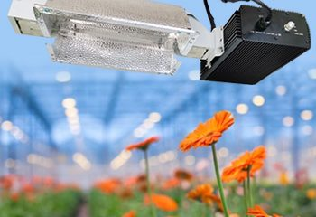 HPS 1000W Double-Ended Lamp System Kits for Indoor Plants includes 1000 Watt DE HPS Bulb and Adjustable Reflector and Digital Dimmable Ballast 240V Grow Light