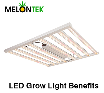 LED use Less Energy when planting indoor